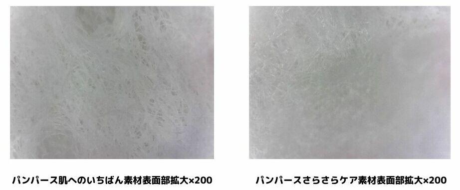 2種類のパンパースの素材表面部を200倍に拡大している