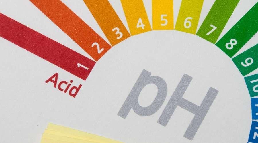 酸性のph色
